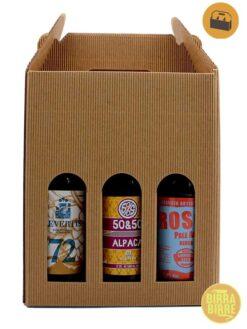 beerbox-sixpack-apa-pale-ale