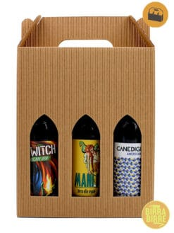 beerbox-sixpack-ipa american ipa
